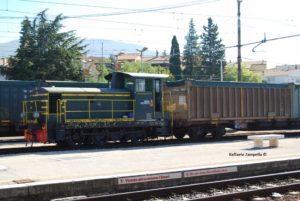 D245_0029-Foligno-2013-10-17-ZampellaR00r